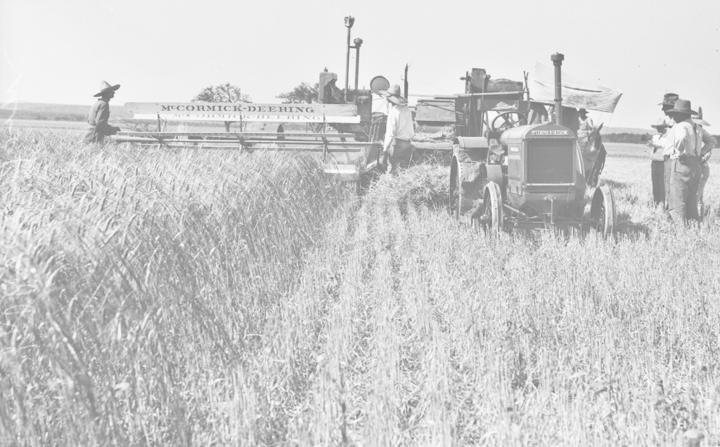 54_1927_Kallison-Ranch_Thresher-and-Wheat-Crop-USTA-Institute-of-Texan-Cultures--lightL-1024-G